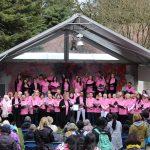 【ボランティア活動報告】4月:Sakura Days Japan Fair