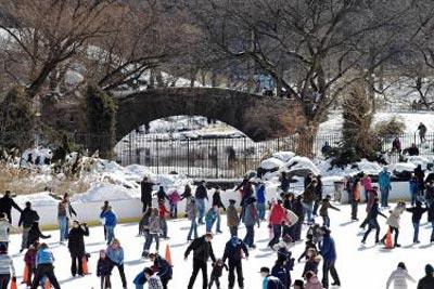 20101112Skating.jpg